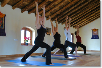 February 2015: two weeks of yoga and horse riding immersion