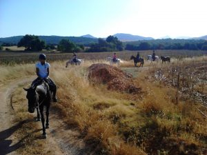 beginners horse ride Andalucia
