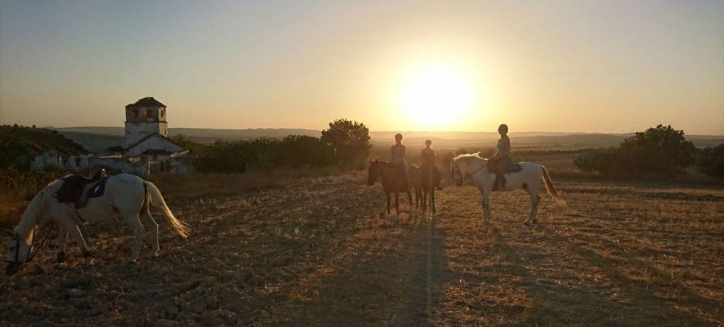 Horseriding&Yoga