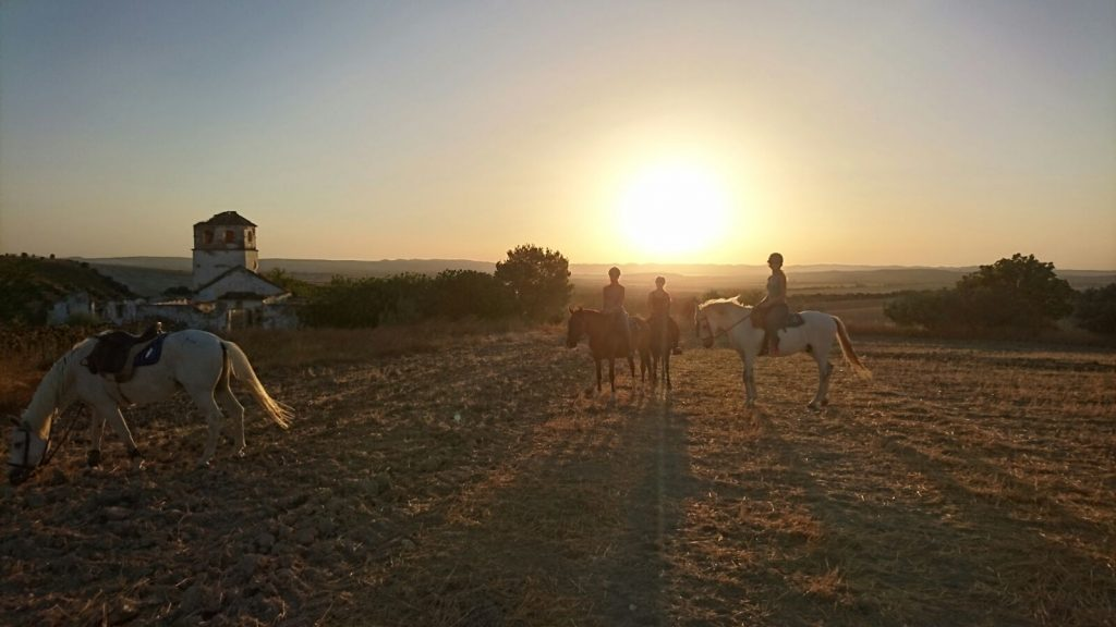 sunset ride andalucia yoga horses