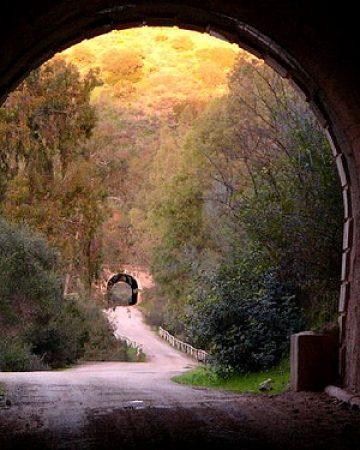 cropped-via-verde-tunel.jpg