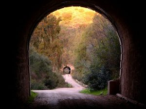 via-verde-tunel