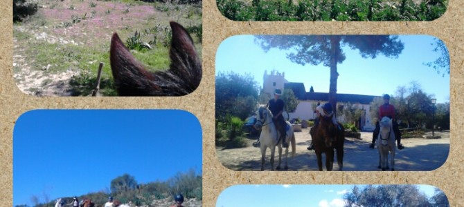 3 days horse trek to Arcos de la Frontera