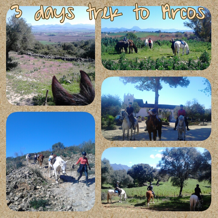 horse trek Arcos Andalusia