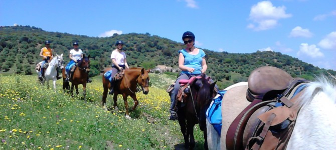 Last Minute Horse riding trek to Ronda
