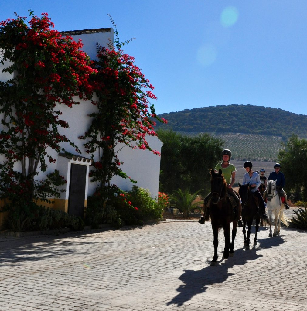 Horseriding and Yoga Holiday