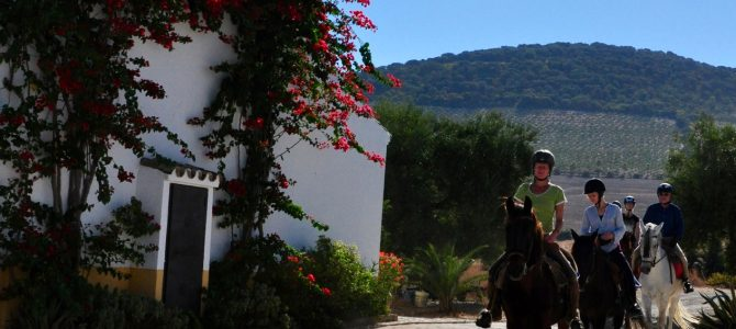 Horse Riding and Yoga Holidays available in february and march 2017