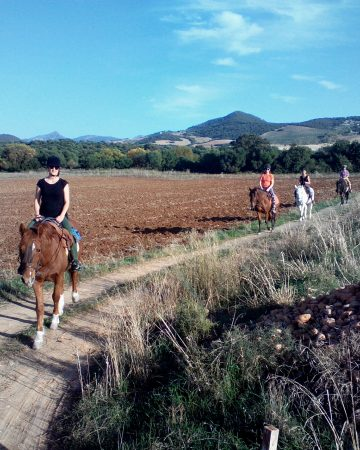 Horse Riding and Spanish Course